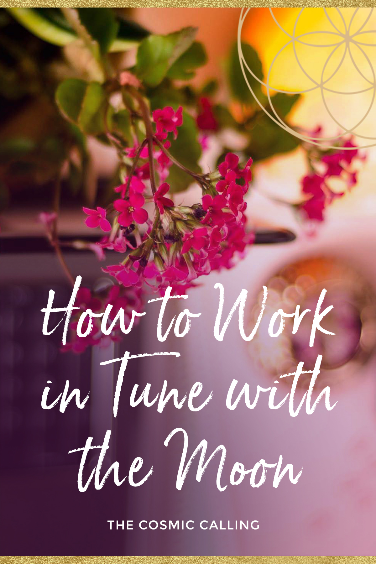 How to Work in Tune with the Moon / The Cosmic Calling Podcast 🎧